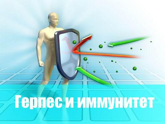 Герпес и иммунитет